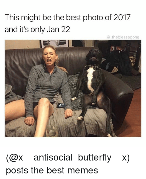 Funny, Meme, and Butterfly: This might be the best photo of 2017  and it's only Jan 22  theblessedone (@x__antisocial_butterfly__x) posts the best memes