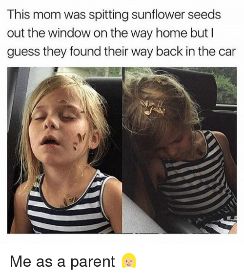 Memes, Guess, and Home: This mom was spitting sunflower seeds  out the window on the way home but I  guess they found their way back in the car Me as a parent 👱🏼♀️