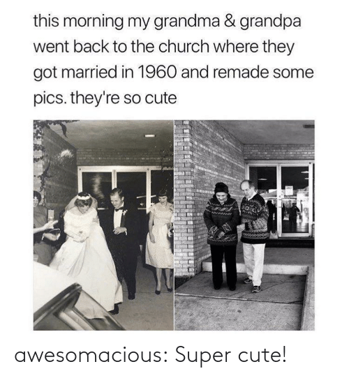 Church: this morning my grandma & grandpa  went back to the church where they  got married in 1960 and remade some  pics. they're so cute awesomacious:  Super cute!