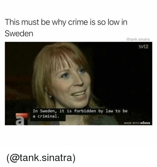 Crime, Sweden, and Dank Memes: This must be why crime is so low in  Sweden  @tank.sinatra  svt2  In Sweden, it is forbidden by law to be  a criminal  MADE WITH MOMUS (@tank.sinatra)