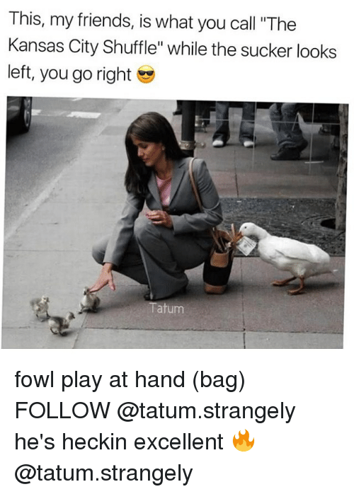 """Fowl: This, my friends, is what you call """"The  Kansas City Shuffle"""" while the sucker looks  left, you go right  Tatum fowl play at hand (bag) FOLLOW @tatum.strangely he's heckin excellent 🔥 @tatum.strangely"""