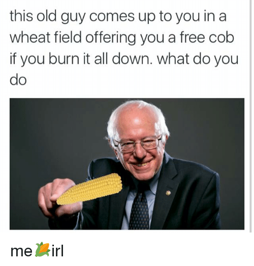 this old guy comes up to you in a wheat 3136933 🅱 25 best memes about wheat field wheat field memes