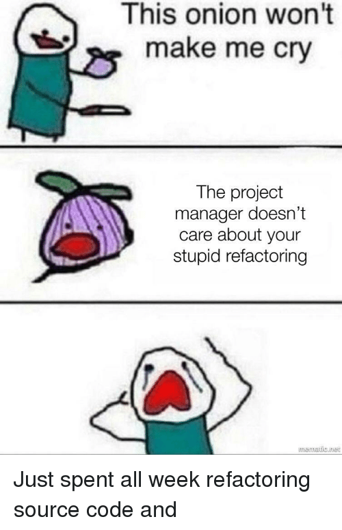 Your Stupid: This onion won't  make me cry  The project  manager doesn't  care about your  stupid refactoring Just spent all week refactoring source code and