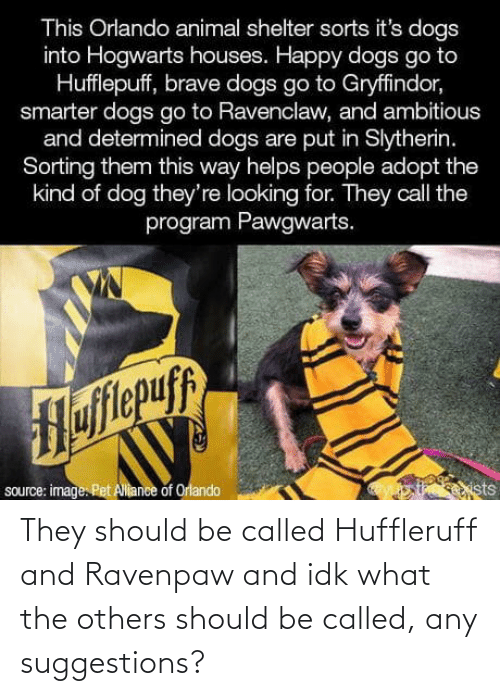 the others: This Orlando animal shelter sorts it's dogs  into Hogwarts houses. Happy dogs go to  Hufflepuff, brave dogs go to Gryffindor,  smarter dogs go to Ravenclaw, and ambitious  and determined dogs are put in Slytherin.  Sorting them this way helps people adopt the  kind of dog they're looking for. They call the  program Pawgwarts.  Hofitepuf  source: image. Pet Allance of Orlando  ists They should be called Huffleruff and Ravenpaw and idk what the others should be called, any suggestions?