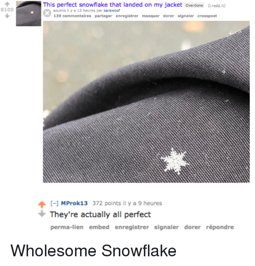 Wholesome, All, and Redd: This perfect snowflake that landed on my jacket overdone (.redd.it)  8109  soumis l y a 12 heures par sarawoof  139 commentaires partager enregistrer masquer dorer signaler crosspost  [-1 MProk13 372 points Il y a 9 heures  They're actually all perfect  perma-lien embed enregistrer signaler dorer répondre <p>Wholesome Snowflake</p>