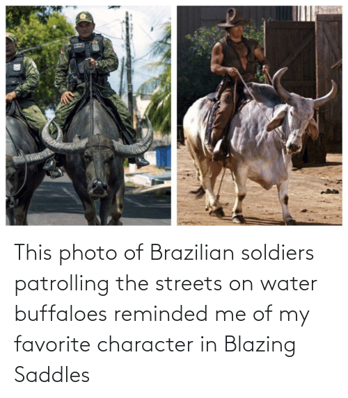 Streets: This photo of Brazilian soldiers patrolling the streets on water buffaloes reminded me of my favorite character in Blazing Saddles
