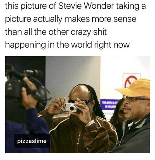 Stevie Wonder: this picture of Stevie Wonder taking a  picture actually makes more sense  than all the other crazy shit  happening in the world right now  pizzaslime