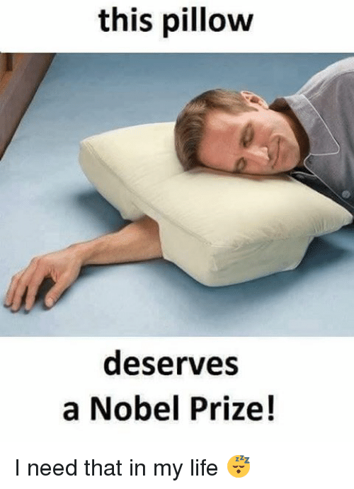 Memes, Nobel Prize, and 🤖: this pillow  deserves  a Nobel Prize! I need that in my life 😴