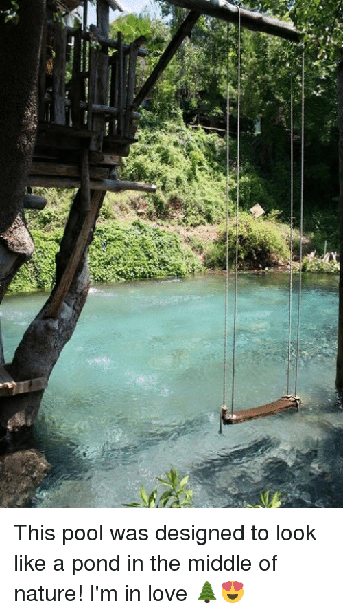Pool: This pool was designed to look like a pond in the middle of nature! I'm in love 🌲😍