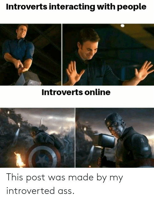 introverted: This post was made by my introverted ass.
