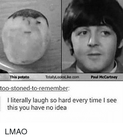 Paul McCartney: This potato  TotalyLooksuko com Paul McCartney  too-stoned-to-remember:  I literally laugh so hard every time I see  this you have no idea LMAO