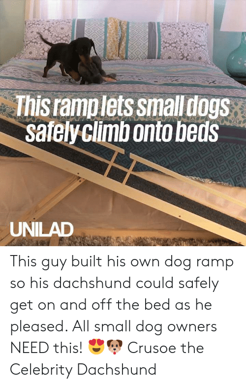 pleased: This ramplets smalldogs  safelyclimbonto beds  UNILAD This guy built his own dog ramp so his dachshund could safely get on and off the bed as he pleased. All small dog owners NEED this! 😍🐶  Crusoe the Celebrity Dachshund