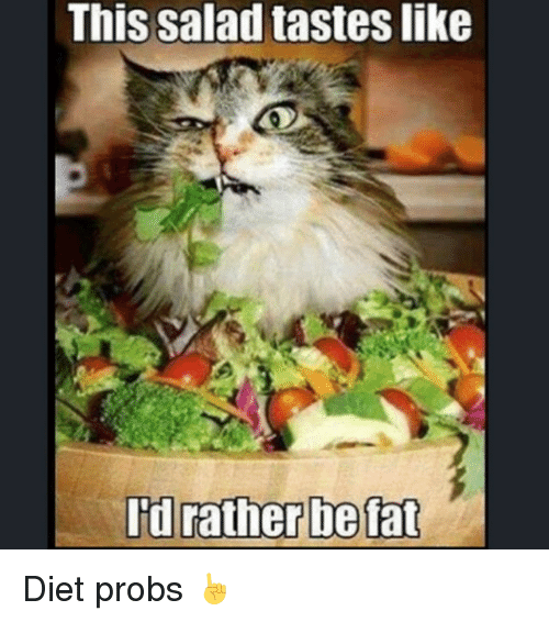 Best Food For A Dieting Cat