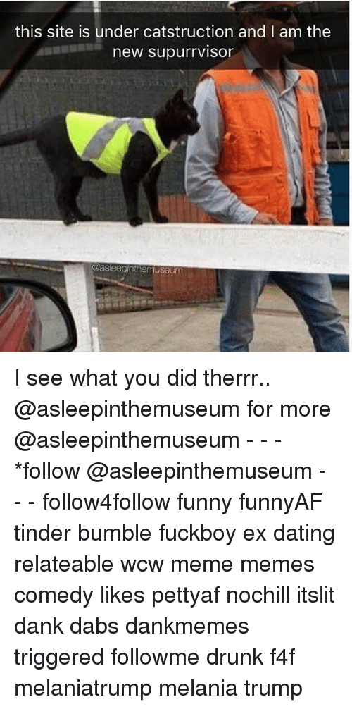The Dab, Dank, and Dating: this site is under catstruction and I am the  new supurrviso  @asleepinthemuseum I see what you did therrr.. @asleepinthemuseum for more @asleepinthemuseum - - - *follow @asleepinthemuseum - - - follow4follow funny funnyAF tinder bumble fuckboy ex dating relateable wcw meme memes comedy likes pettyaf nochill itslit dank dabs dankmemes triggered followme drunk f4f melaniatrump melania trump