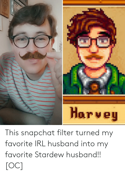 Snapchat Filter: This snapchat filter turned my favorite IRL husband into my favorite Stardew husband!! [OC]