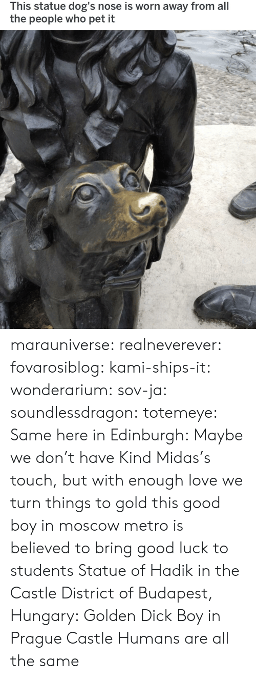 kami: This statue dog's nose is worn away from all  the people who pet it marauniverse: realneverever:   fovarosiblog:  kami-ships-it:  wonderarium:  sov-ja:  soundlessdragon:  totemeye:  Same here in Edinburgh:  Maybe we don't have Kind Midas's touch, but with enough love we turn things to gold  this good boy in moscow metro is believed to bring good luck to students    Statue of Hadik in the Castle District of Budapest, Hungary:  Golden Dick Boy in Prague Castle   Humans are all the same