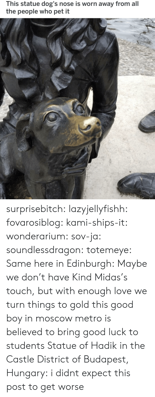 ships: This statue dog's nose is worn away from all  the people who pet it surprisebitch: lazyjellyfishh:  fovarosiblog:  kami-ships-it:  wonderarium:  sov-ja:  soundlessdragon:  totemeye:  Same here in Edinburgh:  Maybe we don't have Kind Midas's touch, but with enough love we turn things to gold  this good boy in moscow metro is believed to bring good luck to students    Statue of Hadik in the Castle District of Budapest, Hungary:    i didnt expect this post to get worse