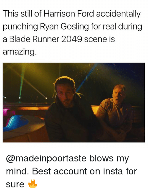 Blade, Harrison Ford, and Memes: This still of Harrison Ford accidentally  punching Ryan Gosling for real during  a Blade Runner 2049 scene is  amazing @madeinpoortaste blows my mind. Best account on insta for sure 🔥