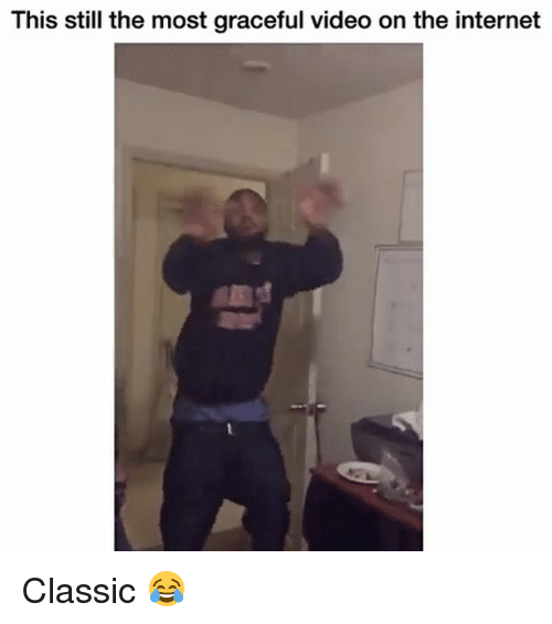 Funny, Internet, and Video: This still the most graceful video on the internet Classic 😂