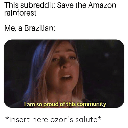 Insert Here: This subreddit: Save the Amazon  rainforest  Me, a Brazilian:  Tam so proud of this community *insert here ozon's salute*