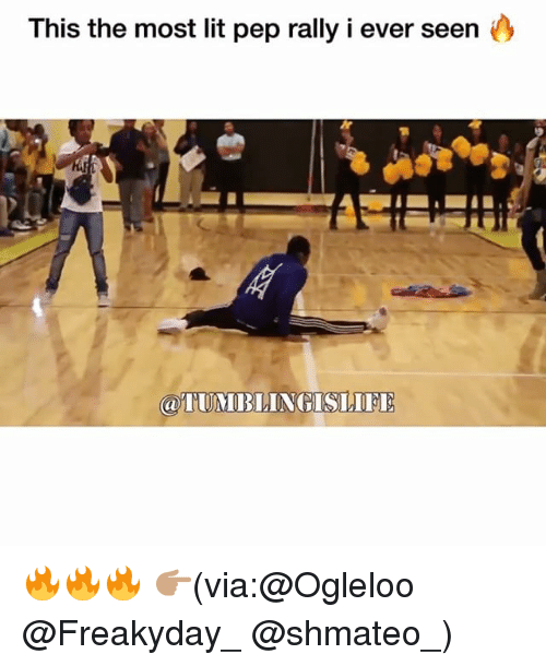Funny, Lit, and Via: This the most lit pep rally i ever seen y 🔥🔥🔥 👉🏽(via:@Ogleloo @Freakyday_ @shmateo_)