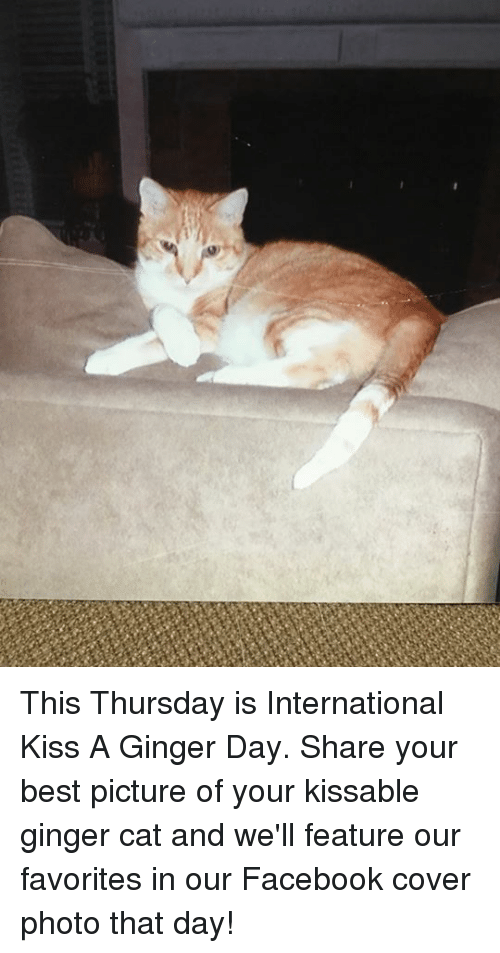 Best Pictures: This Thursday is International Kiss A Ginger Day.  Share your best picture of your kissable ginger cat and we'll feature our favorites in our Facebook cover photo that day!