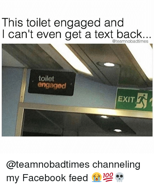 Memes, 🤖, and Toilet: This toilet engaged and  I can't even get a text back...  @teamnobadtimes  toilet  engaged  EXIT @teamnobadtimes channeling my Facebook feed 😭💯💀
