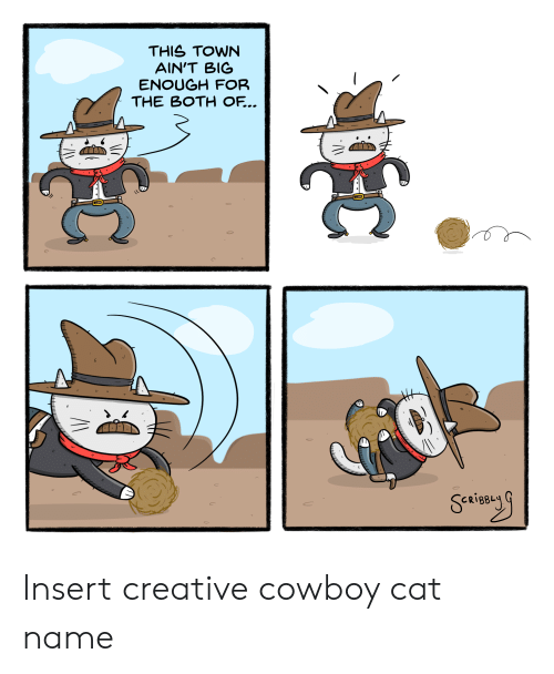 Cowboy: THIS TOWN  AIN'T BIG  ENOUGH FOR  THE BOTH OF... Insert creative cowboy cat name