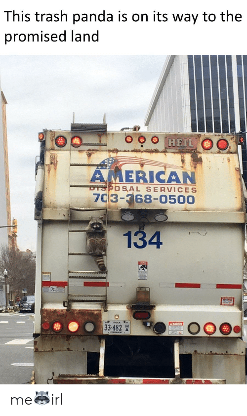 Trash Panda: This trash panda is on its way to the  promised land  HEIL  AMERICAN  DTSPOS AL SERVICES  7C3-368-0500  134  A DANGER  33-482 me🦝irl