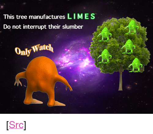 "Reddit, Tree, and Com: This tree manufactures LIMES  Do not interrupt their slumber  Watcl  Only <p>[<a href=""https://www.reddit.com/r/surrealmemes/comments/8b8j78/please_do_not_disturb/"">Src</a>]</p>"