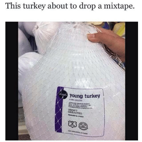 A Mixtape: This turkey about to drop a mixtape.  young turkey  WITH GEETS  BROAD  BREASTED