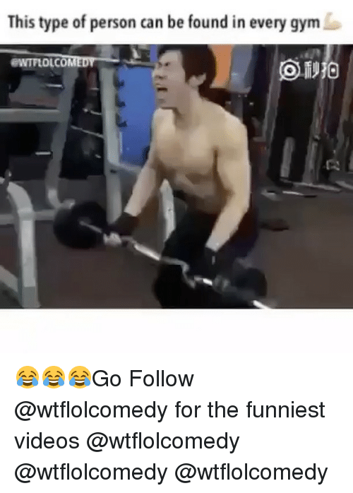 Memes, 🤖, and Funniest: This type of person can be found in every gym  EWTFLOLCOMED 😂😂😂Go Follow @wtflolcomedy for the funniest videos @wtflolcomedy @wtflolcomedy @wtflolcomedy