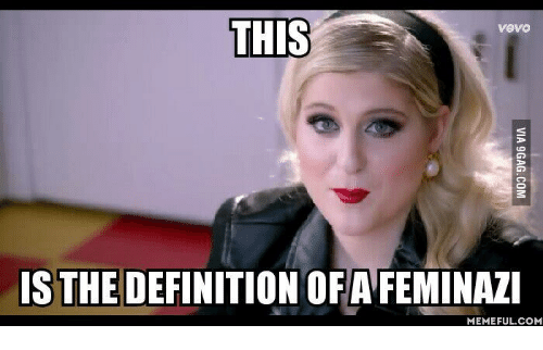 this-vevo-is-the-definition-ofafeminazi-