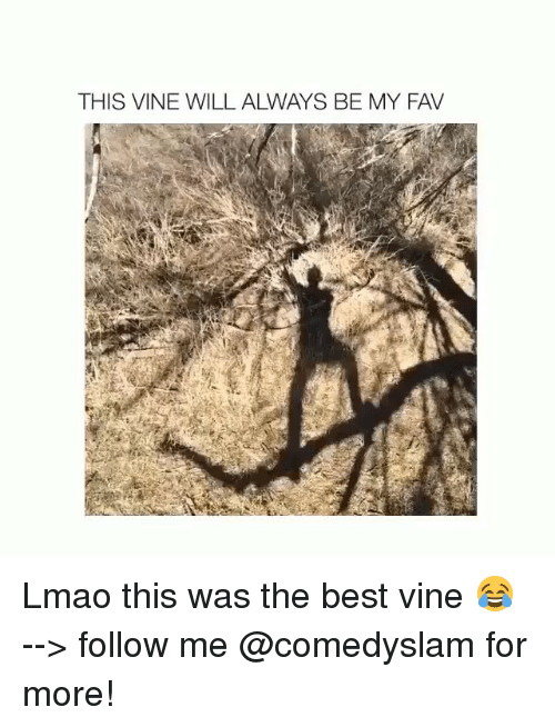 Funny, Vine, and Vines: THIS VINE WILL ALWAYS BE MY FAV Lmao this was the best vine 😂 --> follow me @comedyslam for more!