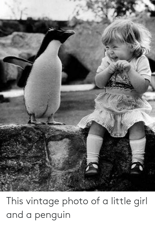 Penguin: This vintage photo of a little girl and a penguin