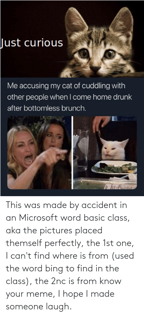 know your meme: This was made by accident in an Microsoft word basic class, aka the pictures placed themself perfectly, the 1st one, I can't find where is from (used the word bing to find in the class), the 2nc is from know your meme, I hope I made someone laugh.