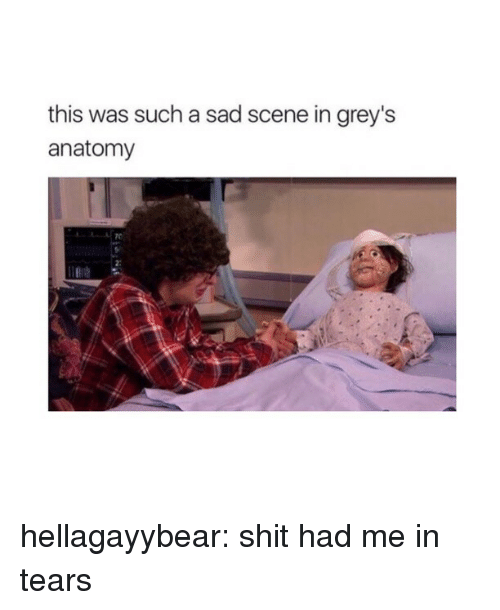 greys: this was such a sad scene in grey's  anatomy  2: hellagayybear:  shit had me in tears