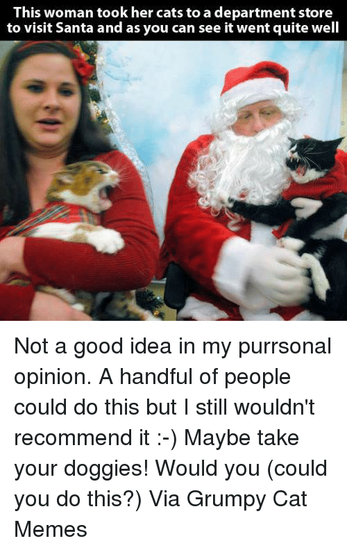 Memes, Quite, and Santa: This woman took her cats to a department store  to visit Santa and as you can see it went quite well Not a good idea in my purrsonal opinion. A handful of people could do this but I still wouldn't recommend it :-) Maybe take your doggies! Would you (could you do this?) Via Grumpy Cat Memes