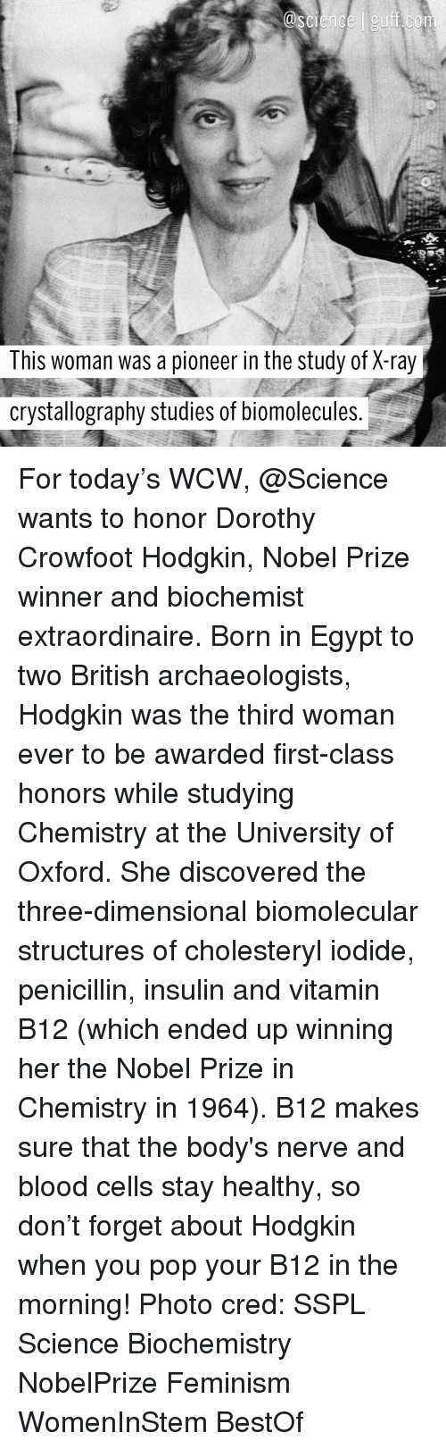 Bloods, Memes, and Nobel Prize: This woman was a pioneer in the study of X-ray  crystallography studies of biomolecules For today's WCW, @Science wants to honor Dorothy Crowfoot Hodgkin, Nobel Prize winner and biochemist extraordinaire. Born in Egypt to two British archaeologists, Hodgkin was the third woman ever to be awarded first-class honors while studying Chemistry at the University of Oxford. She discovered the three-dimensional biomolecular structures of cholesteryl iodide, penicillin, insulin and vitamin B12 (which ended up winning her the Nobel Prize in Chemistry in 1964). B12 makes sure that the body's nerve and blood cells stay healthy, so don't forget about Hodgkin when you pop your B12 in the morning! Photo cred: SSPL Science Biochemistry NobelPrize Feminism WomenInStem BestOf