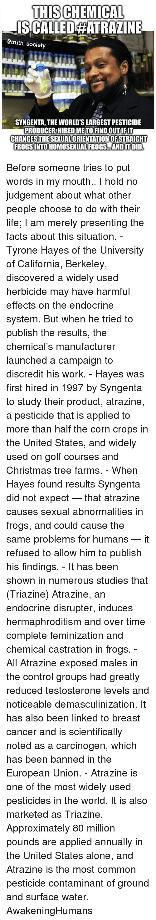 syngenta: THISCHEMICAL  ISCALLEDAATRAZINE  @truth society  SYNGENTA, THE WORLDSLARGEST PESTICIDE  PRODUCER HIREDMETO FIND OUTIFIT  CHANGES THESEXUALORIENTATIONOFSTRAIGHT  FROGSINTOHOMOSEXUAL FROGS AND IT DID Before someone tries to put words in my mouth.. I hold no judgement about what other people choose to do with their life; I am merely presenting the facts about this situation. - Tyrone Hayes of the University of California, Berkeley, discovered a widely used herbicide may have harmful effects on the endocrine system. But when he tried to publish the results, the chemical's manufacturer launched a campaign to discredit his work. - Hayes was first hired in 1997 by Syngenta to study their product, atrazine, a pesticide that is applied to more than half the corn crops in the United States, and widely used on golf courses and Christmas tree farms. - When Hayes found results Syngenta did not expect — that atrazine causes sexual abnormalities in frogs, and could cause the same problems for humans — it refused to allow him to publish his findings. - It has been shown in numerous studies that (Triazine) Atrazine, an endocrine disrupter, induces hermaphroditism and over time complete feminization and chemical castration in frogs. - All Atrazine exposed males in the control groups had greatly reduced testosterone levels and noticeable demasculinization. It has also been linked to breast cancer and is scientifically noted as a carcinogen, which has been banned in the European Union. - Atrazine is one of the most widely used pesticides in the world. It is also marketed as Triazine. Approximately 80 million pounds are applied annually in the United States alone, and Atrazine is the most common pesticide contaminant of ground and surface water. AwakeningHumans
