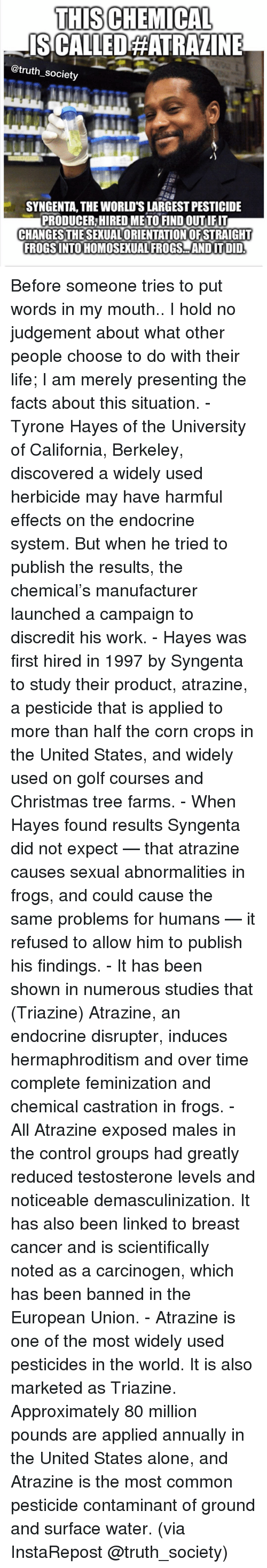 syngenta: THISCHEMICAL  ISCALLEDEATRALINE  @truth society  SYNGENTA, THE WORLD'S LARGEST PESTICIDE  PRODUCER HIREDMETOFINDOUTIFIT  CHANGES THESEXUALORIENTATIONOFSTRAIGHT  FROGSINTOHOMOSEXUAL FROGS AND ITDID Before someone tries to put words in my mouth.. I hold no judgement about what other people choose to do with their life; I am merely presenting the facts about this situation. - Tyrone Hayes of the University of California, Berkeley, discovered a widely used herbicide may have harmful effects on the endocrine system. But when he tried to publish the results, the chemical's manufacturer launched a campaign to discredit his work. - Hayes was first hired in 1997 by Syngenta to study their product, atrazine, a pesticide that is applied to more than half the corn crops in the United States, and widely used on golf courses and Christmas tree farms. - When Hayes found results Syngenta did not expect — that atrazine causes sexual abnormalities in frogs, and could cause the same problems for humans — it refused to allow him to publish his findings. - It has been shown in numerous studies that (Triazine) Atrazine, an endocrine disrupter, induces hermaphroditism and over time complete feminization and chemical castration in frogs. - All Atrazine exposed males in the control groups had greatly reduced testosterone levels and noticeable demasculinization. It has also been linked to breast cancer and is scientifically noted as a carcinogen, which has been banned in the European Union. - Atrazine is one of the most widely used pesticides in the world. It is also marketed as Triazine. Approximately 80 million pounds are applied annually in the United States alone, and Atrazine is the most common pesticide contaminant of ground and surface water. (via InstaRepost @truth_society)