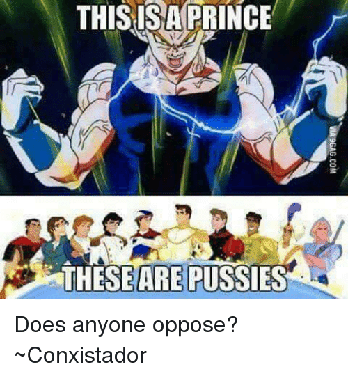 Memes, Prince, and 🤖: THISISA PRINCE  THESEARE PUSSIES Does anyone oppose? ~Conxistador