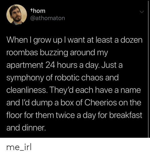 Robotic: thom  @athomaton  When I grow upl want at least a dozen  roombas buzzing around my  apartment 24 hours a day. Just a  symphony of robotic chaos and  cleanliness. They'd each have a name  and I'd dump a box of Cheerios on the  floor for them twice a day for breakfast  and dinner. me_irl