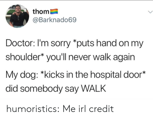 """R Me Irl: thom  @Barknado69  Doctor: I'm sorry """"puts hand on my  shoulder* you'll never walk again  My dog: *kicks in the hospital door*  did somebody say WALK humoristics:  Me irl credit"""