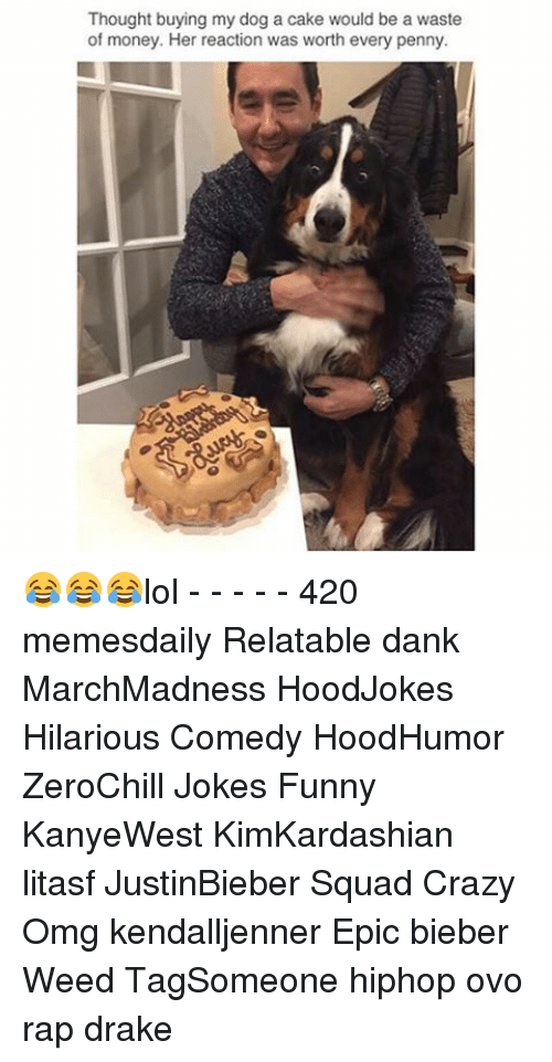 Memes, 🤖, and Weeds: Thought buying my dog a cake would be a waste  of money. Her reaction was worth every penny. 😂😂😂lol - - - - - 420 memesdaily Relatable dank MarchMadness HoodJokes Hilarious Comedy HoodHumor ZeroChill Jokes Funny KanyeWest KimKardashian litasf JustinBieber Squad Crazy Omg kendalljenner Epic bieber Weed TagSomeone hiphop ovo rap drake