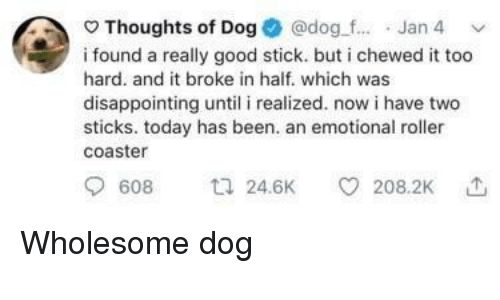 roller coaster: Thoughts of Dog @dog.f... Jan 4  i found a really good stick. but i chewed it too  hard. and it broke in half. which was  disappointing until i realized. now i have two  sticks. today has been. an emotional roller  coaster  608 24.6K 208.2K Wholesome dog