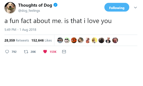 Love, I Love You, and Dog: Thoughts of Dog *  @dog feelings  Following  a fun fact about me. is that i love you  5:49 PM-1 Aug 2018  28,359 Retweets 152,646 Likes 00迡圏 ふ●  792 t 28K 153K