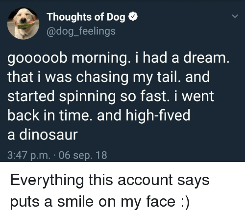A Dream, Smile, and Time: Thoughts of Dog  @dog_feelings  gooooob morning. i had a dream  that i was chasing my tail. and  started spinning so fast. i went  back in time. and high-fived  a dinosau  3:47 p.m. 06 sep. 18 Everything this account says puts a smile on my face :)