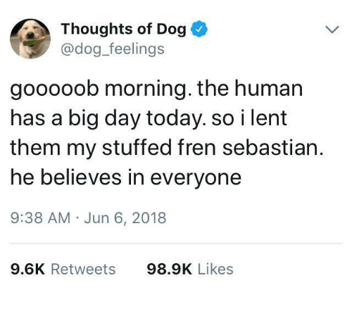 Today, Dog, and Human: Thoughts of Dog  @dog_feelings  gooooob morning. the human  has a big day today. so i lent  them my stuffed fren sebastian.  he believes in everyone  9:38 AM Jun 6, 2018  9.6K Retweets  98.9K Likes