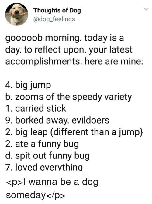 Funny, Today, and Dog: Thoughts of Dog  @dog_feelings  gooooob morning. today is a  day. to reflect upon. your latest  accomplishments. here are mine:  4. big jump  b. zooms of the speedy variety  1. carried stick  9. borked away. evildoers  2. big leap (different than a jump)  2. ate a funny bug  d. spit out funny bug  7. loved everything <p>I wanna be a dog someday</p>